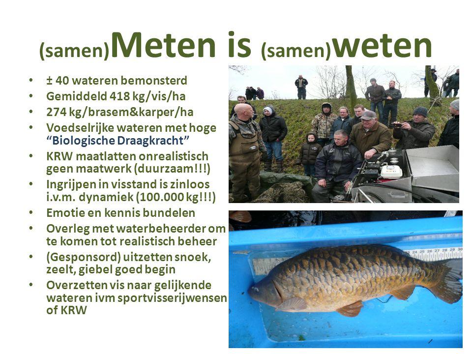 (samen) Meten is (samen) weten ± 40 wateren bemonsterd Gemiddeld 418 kg/vis/ha 274 kg/brasem&karper/ha Voedselrijke wateren met hoge Biologische Draagkracht KRW maatlatten onrealistisch geen maatwerk (duurzaam!!!) Ingrijpen in visstand is zinloos i.v.m.