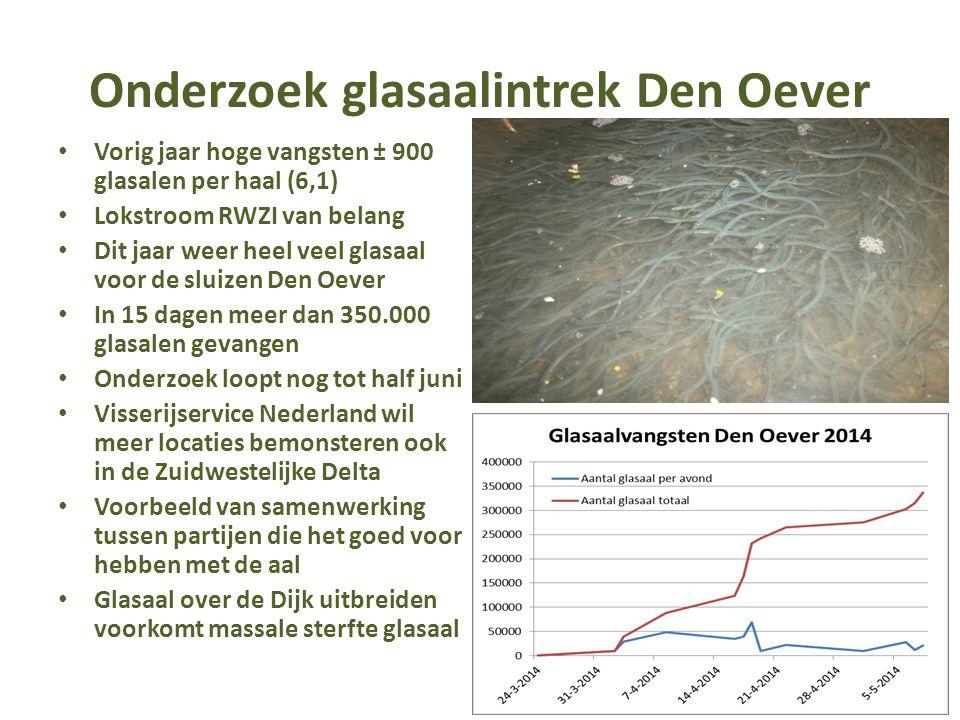 Onderzoek glasaalintrek Den Oever Vorig jaar hoge vangsten ± 900 glasalen per haal (6,1) Lokstroom RWZI van belang Dit jaar weer heel veel glasaal voo