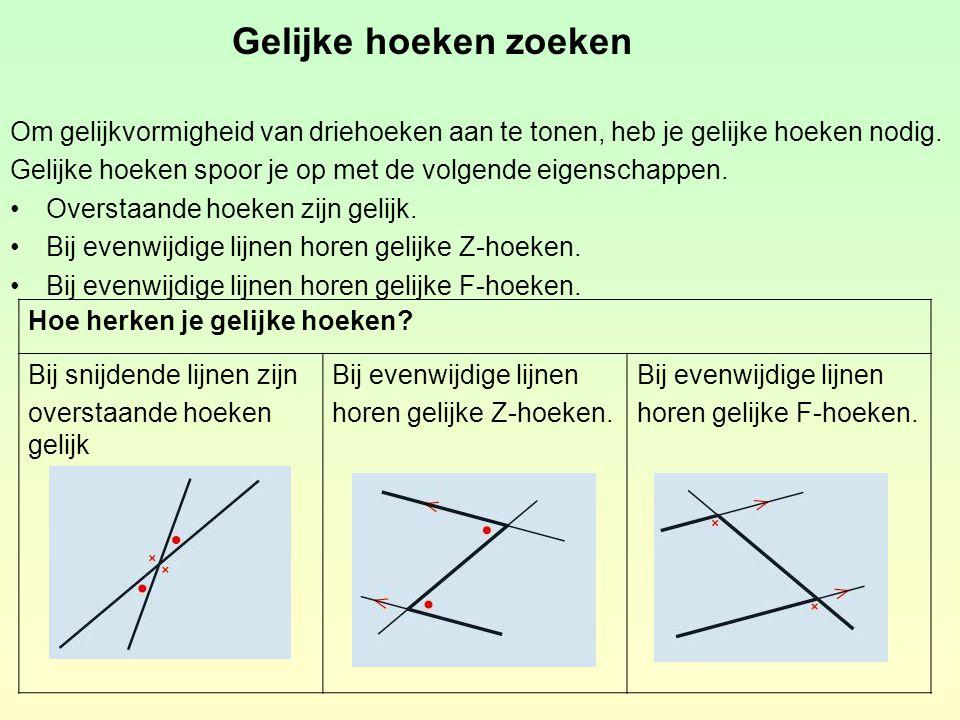 Gelijke hoeken zoeken Om gelijkvormigheid van driehoeken aan te tonen, heb je gelijke hoeken nodig. Gelijke hoeken spoor je op met de volgende eigensc