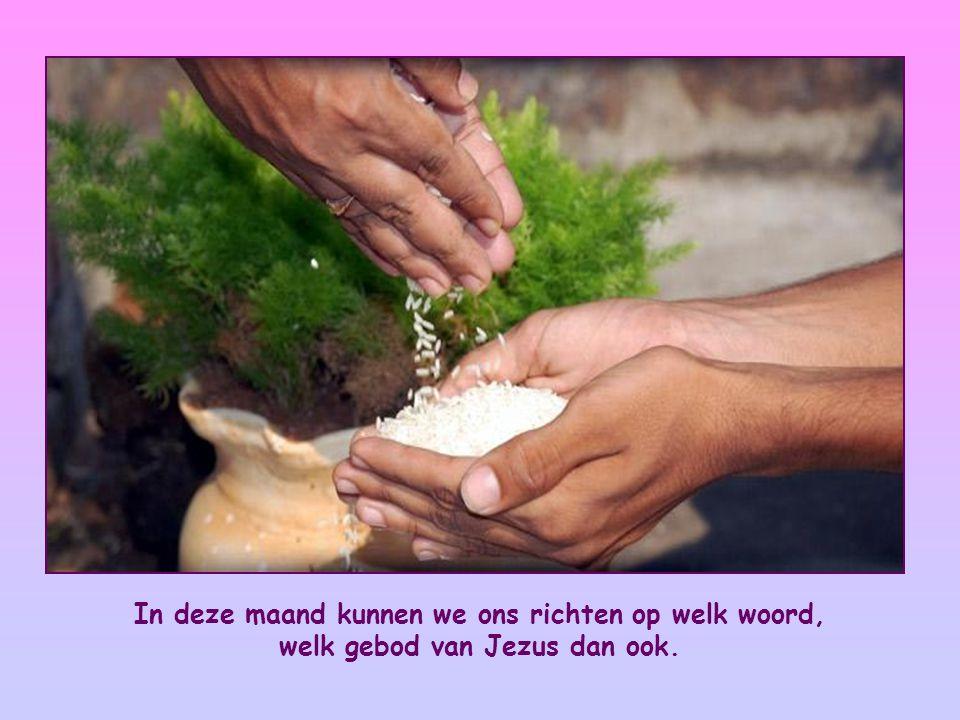 Het Woord van deze maand vraagt edelmoedigheid.