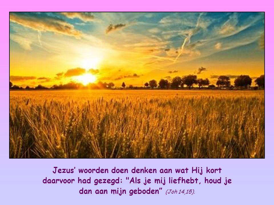 Jezus' woorden doen denken aan wat Hij kort daarvoor had gezegd: Als je mij liefhebt, houd je dan aan mijn geboden (Joh 14,15).