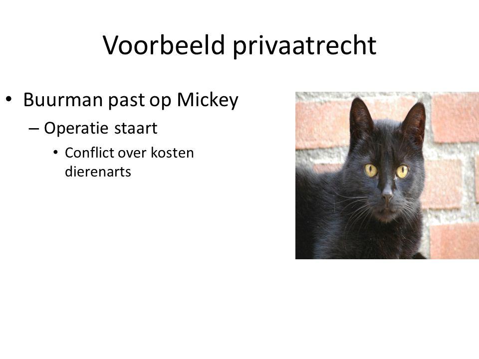Voorbeeld privaatrecht Buurman past op Mickey – Operatie staart Conflict over kosten dierenarts
