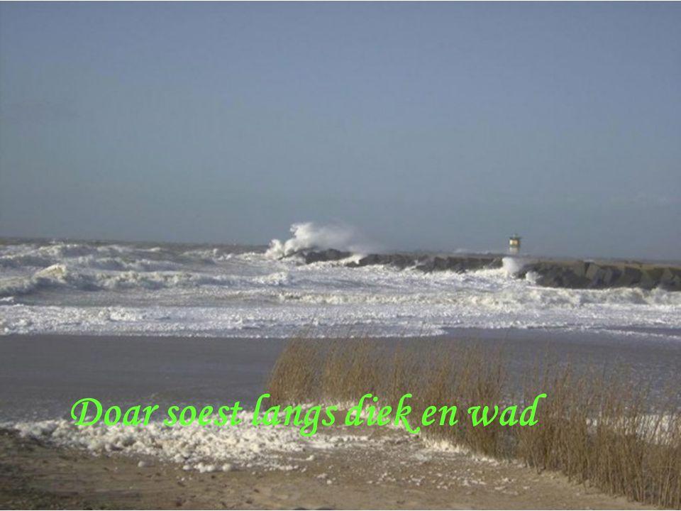 Doar broest de zee, doar hoelt de wind