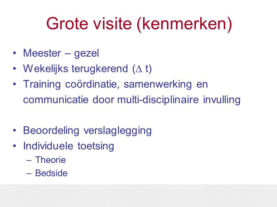 Grote visite (kenmerken) Meester – gezel Wekelijks terugkerend (∆ t) Training coördinatie, samenwerking en communicatie door multi-disciplinaire invul