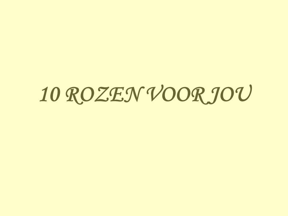 10 ROZEN VOOR JOU