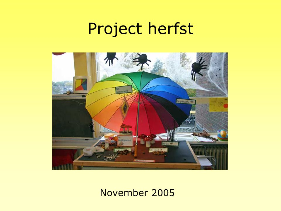 Project kinderboekenweek Oktober 2006 Het thema is: De leeuw is los