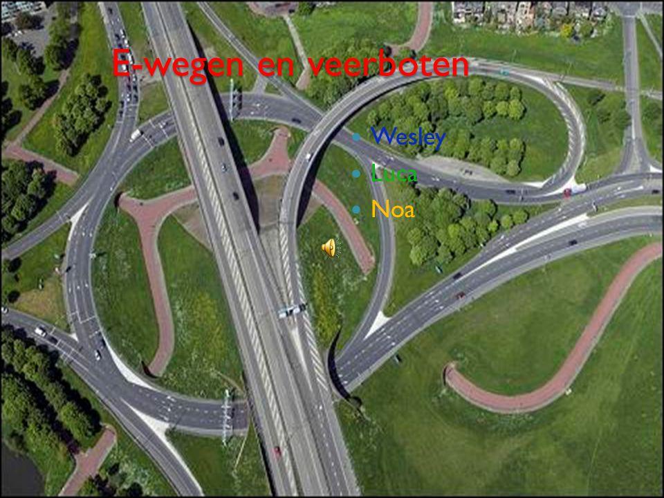 Indeling Waarom hebben we dit gekozen.Welke E-wegen zijn er.