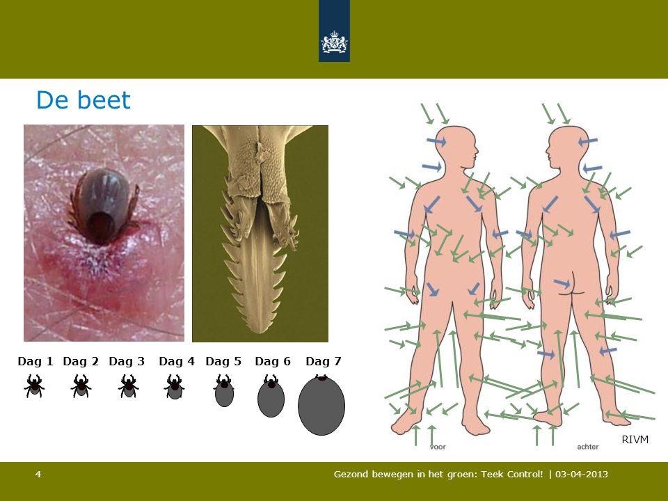 De beet Gezond bewegen in het groen: Teek Control! | 03-04-2013 4 Dag 1Dag 3Dag 5Dag 7 RIVM Dag 2Dag 4Dag 6