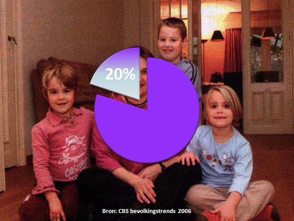 Bron: CBS bevolkingstrends 2006
