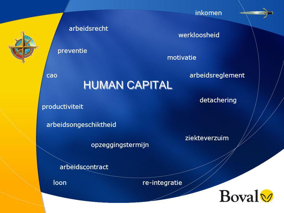 De veranderende positie van personeel in organisaties Van scheepsjongen tot......