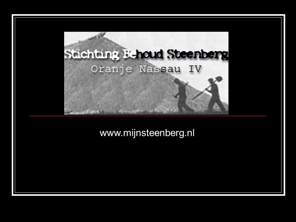 www.mijnsteenberg.nl