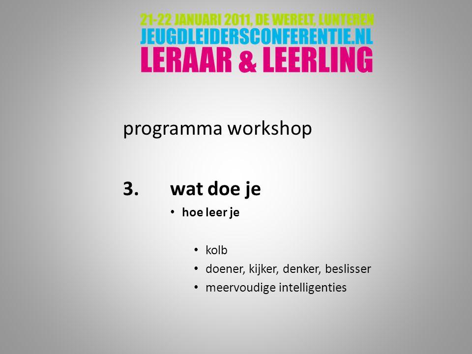 programma workshop 3.wat doe je hoe leer je kolb doener, kijker, denker, beslisser meervoudige intelligenties