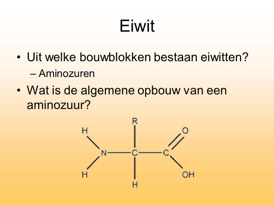 Eiwit Uit welke bouwblokken bestaan eiwitten? –Aminozuren Wat is de algemene opbouw van een aminozuur?