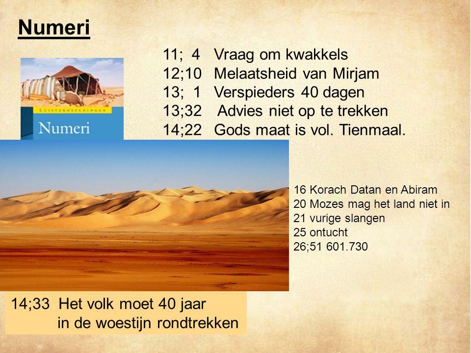 11; 4 Vraag om kwakkels 12;10 Melaatsheid van Mirjam 13; 1 Verspieders 40 dagen 13;32 Advies niet op te trekken 14;22 Gods maat is vol.