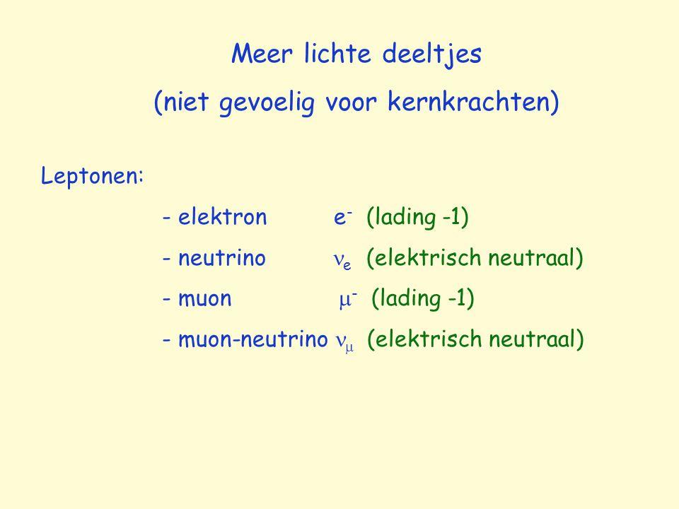 Meer lichte deeltjes (niet gevoelig voor kernkrachten) Leptonen: - elektron e - (lading -1) - neutrino e (elektrisch neutraal) - muon  - (lading -1)