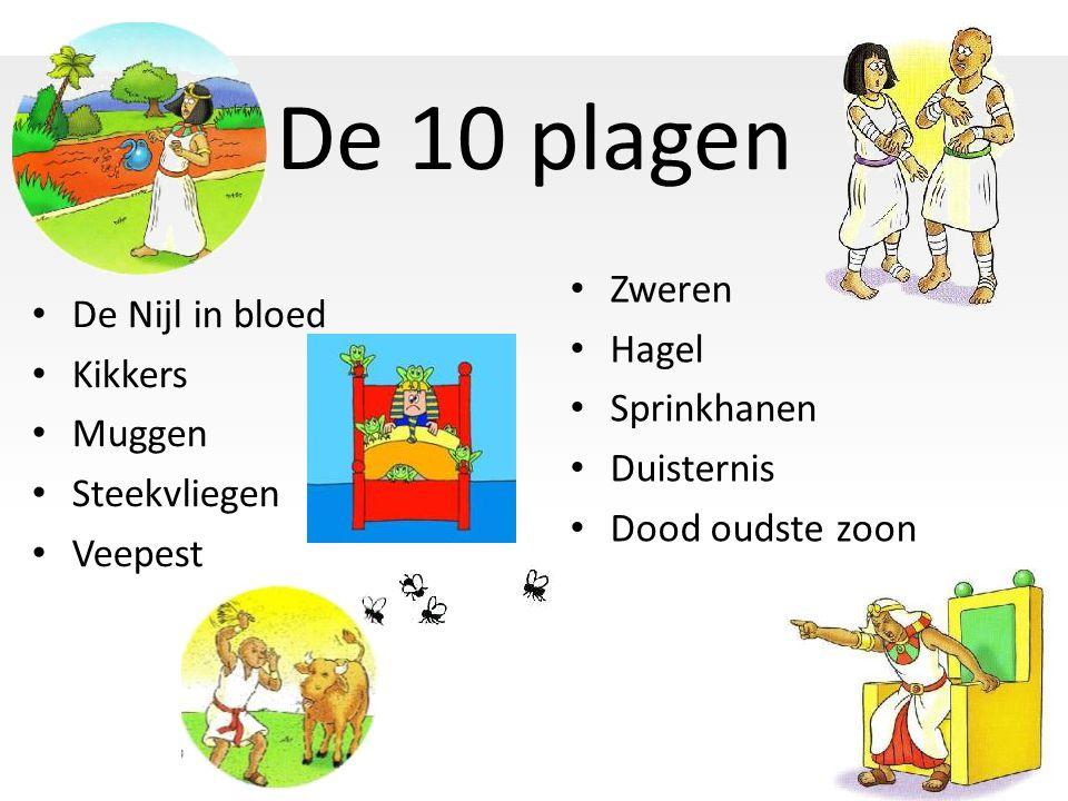 De 10 plagen De Nijl in bloed Kikkers Muggen Steekvliegen Veepest Zweren Hagel Sprinkhanen Duisternis Dood oudste zoon