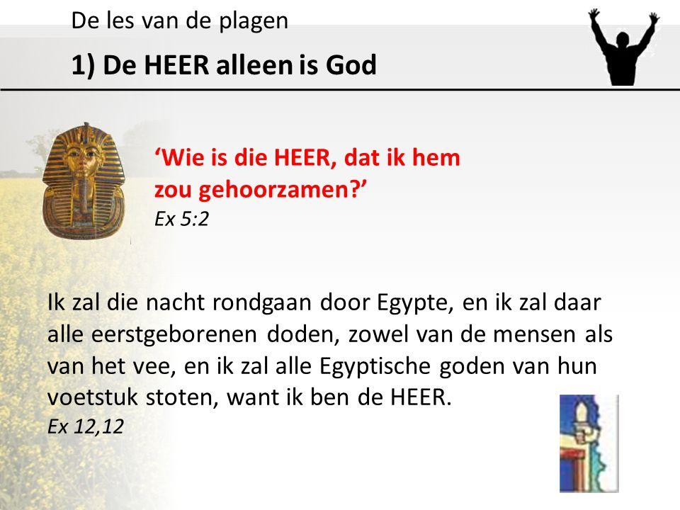 De les van de plagen 1) De HEER alleen is God 'Wie is die HEER, dat ik hem zou gehoorzamen?' Ex 5:2 Ik zal die nacht rondgaan door Egypte, en ik zal d