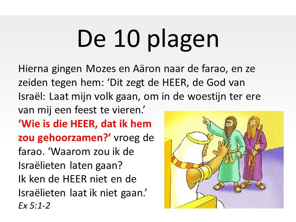 De 10 plagen Hierna gingen Mozes en Aäron naar de farao, en ze zeiden tegen hem: 'Dit zegt de HEER, de God van Israël: Laat mijn volk gaan, om in de w