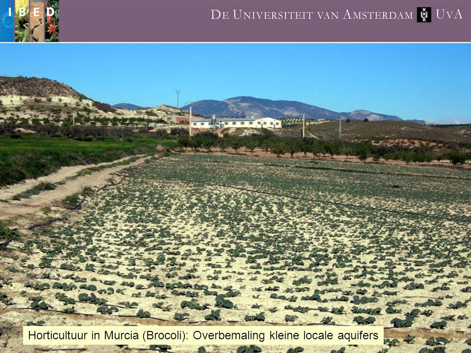Horticultuur in Murcia (Brocoli): Overbemaling kleine locale aquifers