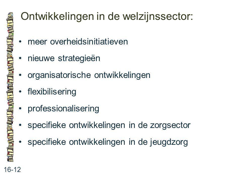 Ontwikkelingen in de welzijnssector: 16-12 meer overheidsinitiatieven nieuwe strategieën organisatorische ontwikkelingen flexibilisering professionali