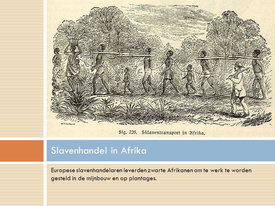 Slavenhandel in Afrika Europese slavenhandelaren leverden zwarte Afrikanen om te werk te worden gesteld in de mijnbouw en op plantages.