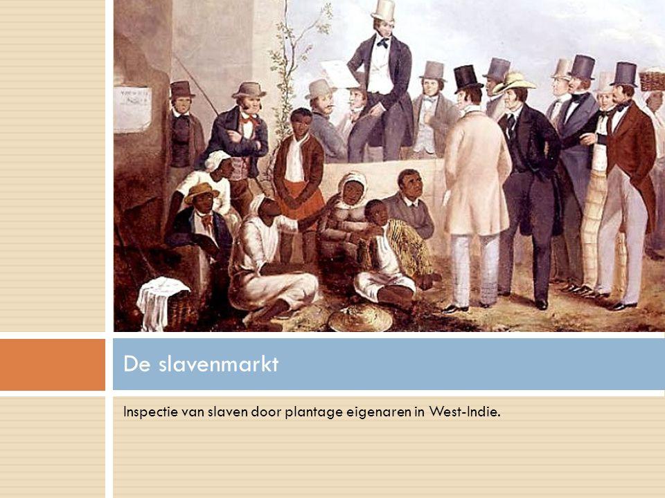 Een minimum aan leefruimte betekende een maximum aan laadvermogen, zo redeneerden de slavenhandelaren.