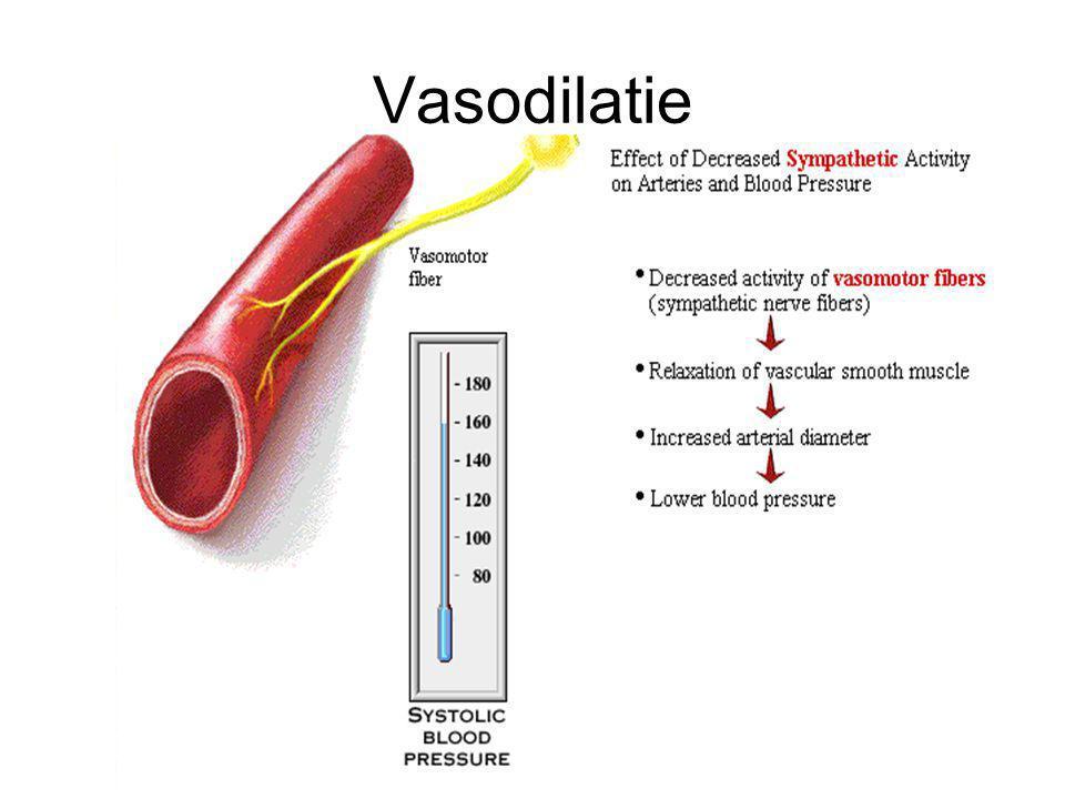 Vasodilatie