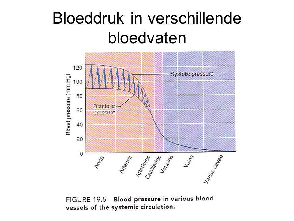 Korte termijn regulatie van de verhoogde bloeddruk