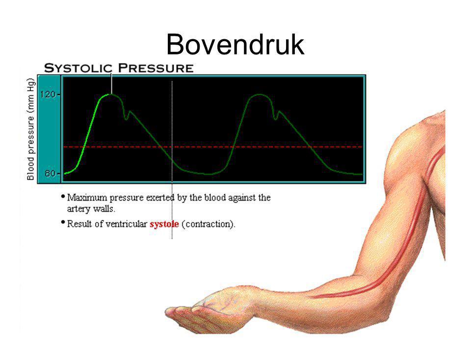 Samenvatting bloeddruk Systolische druk = hoogste druk in de ader, resultaat van de contractie Diastolische druk = laagste druk in de ader, resultaat van de onspanning van het hart Pulse Druk = verschil tussen systolische en diastolische druk