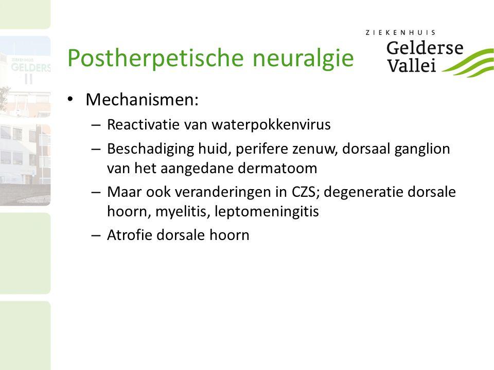 Mechanismen: – Reactivatie van waterpokkenvirus – Beschadiging huid, perifere zenuw, dorsaal ganglion van het aangedane dermatoom – Maar ook veranderi