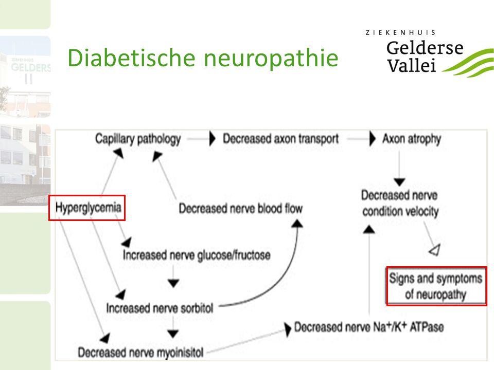 Focale neuropathie: – mononeuropathie – beklemmingsneuropathie (carpaal tunnel syndroom) Autonome neuropathie Distale symmetrische neuropathie – Sensibiliteit ↓, dysesthesie, paresthesie – brandende en schietende pijn in sokvormig gebied – met name nachtelijke pijn