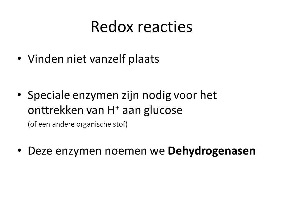 Redox reacties Vinden niet vanzelf plaats Speciale enzymen zijn nodig voor het onttrekken van H + aan glucose (of een andere organische stof) Deze enz