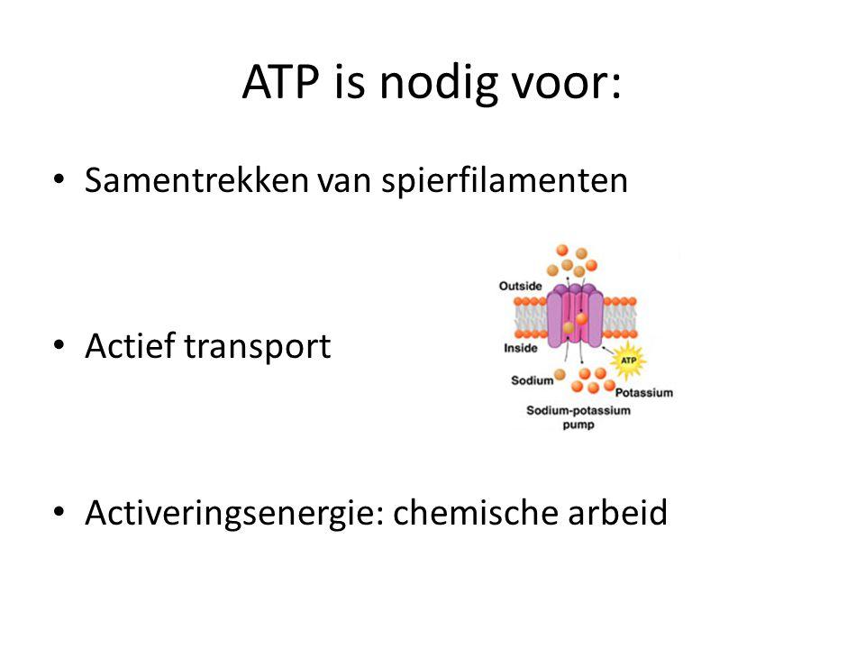 ATP is nodig voor: Samentrekken van spierfilamenten Actief transport Activeringsenergie: chemische arbeid