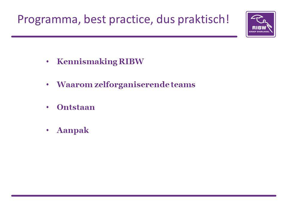 Kennismaking RIBW Waarom zelforganiserende teams Ontstaan Aanpak Programma, best practice, dus praktisch!