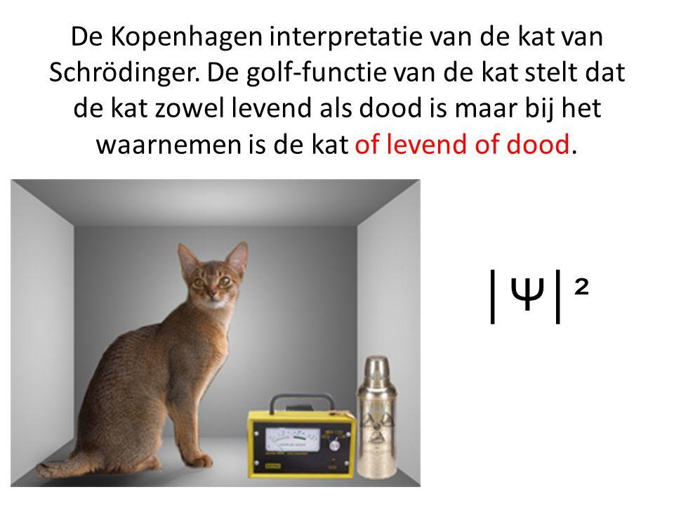 De Kopenhagen interpretatie van de kat van Schrödinger. De golf-functie van de kat stelt dat de kat zowel levend als dood is maar bij het waarnemen is