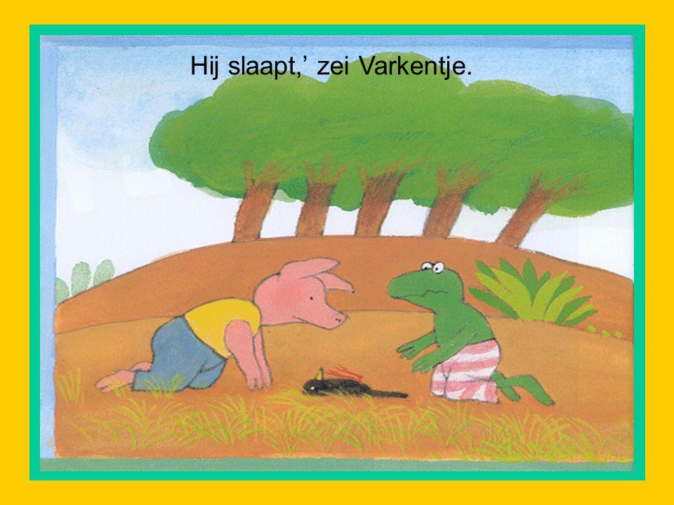 Toen ze bij de rand van het bos gekomen waren, wees Kikker naar de grond.