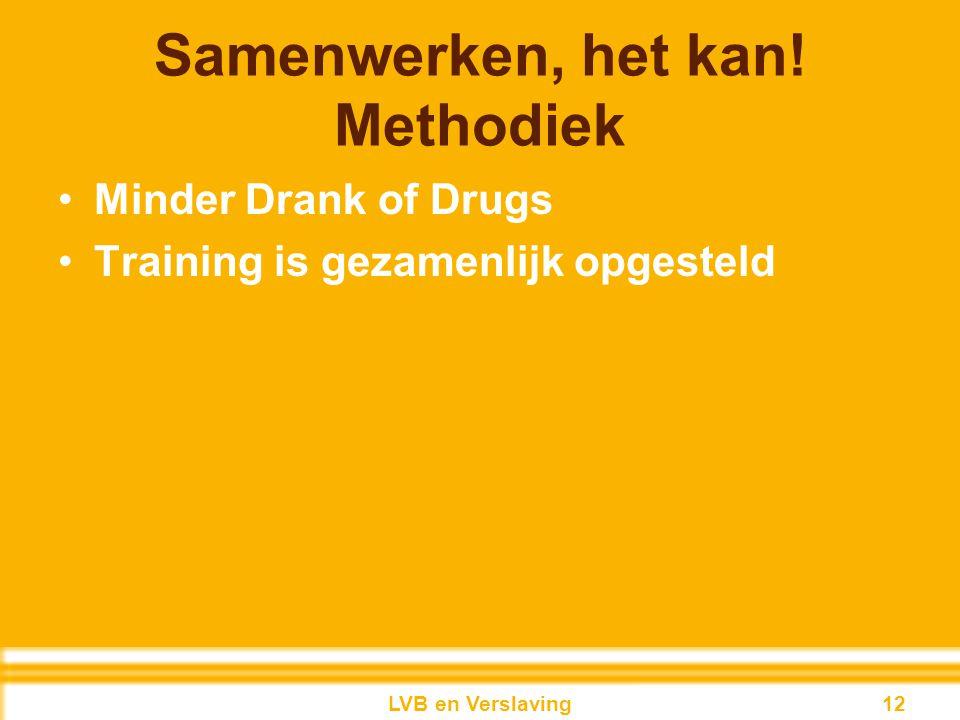 Samenwerken, het kan! Methodiek Minder Drank of Drugs Training is gezamenlijk opgesteld 12LVB en Verslaving 12