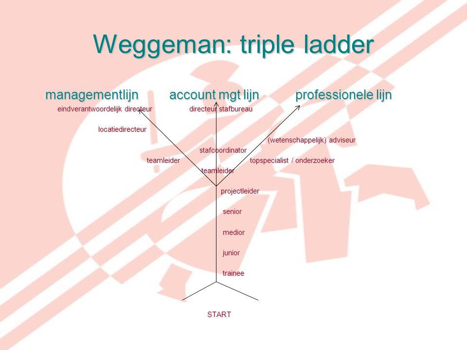 Weggeman: triple ladder managementlijn account mgt lijn professionele lijn managementlijn account mgt lijn professionele lijn eindverantwoordelijk dir