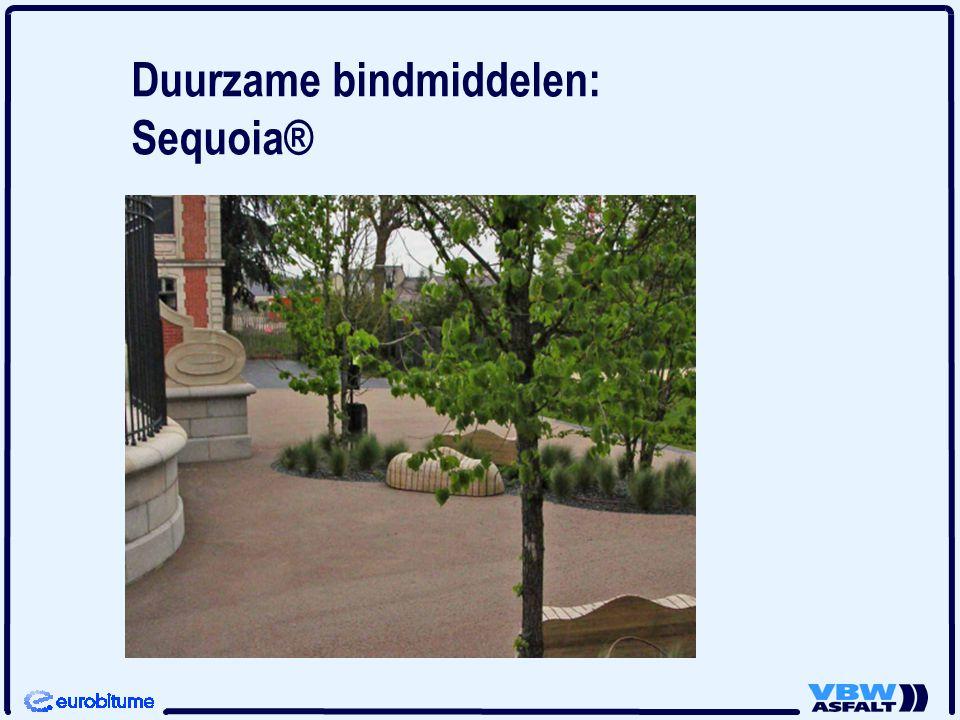 Duurzame bindmiddelen: Sequoia®