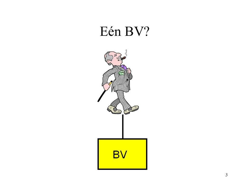Eén BV? 3