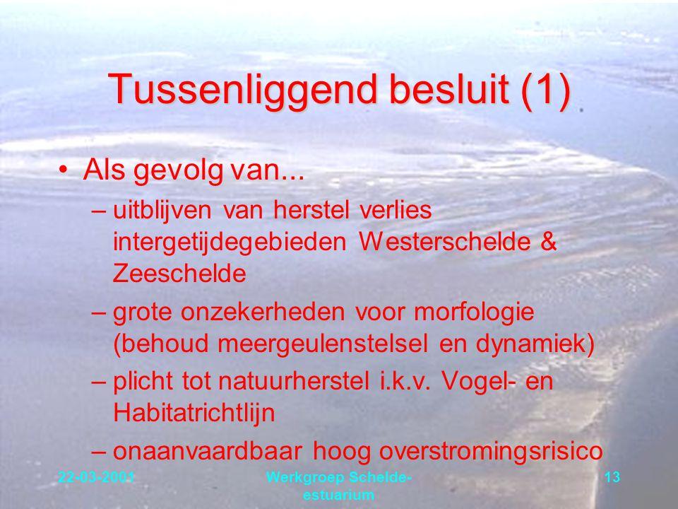 22-03-2001Werkgroep Schelde- estuarium 13 Tussenliggend besluit (1) Als gevolg van... –uitblijven van herstel verlies intergetijdegebieden Westerschel