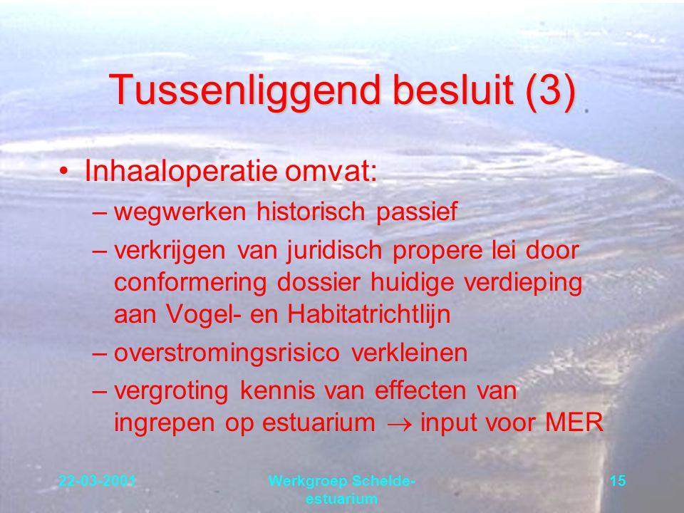 22-03-2001Werkgroep Schelde- estuarium 15 Tussenliggend besluit (3) Inhaaloperatie omvat: –wegwerken historisch passief –verkrijgen van juridisch prop