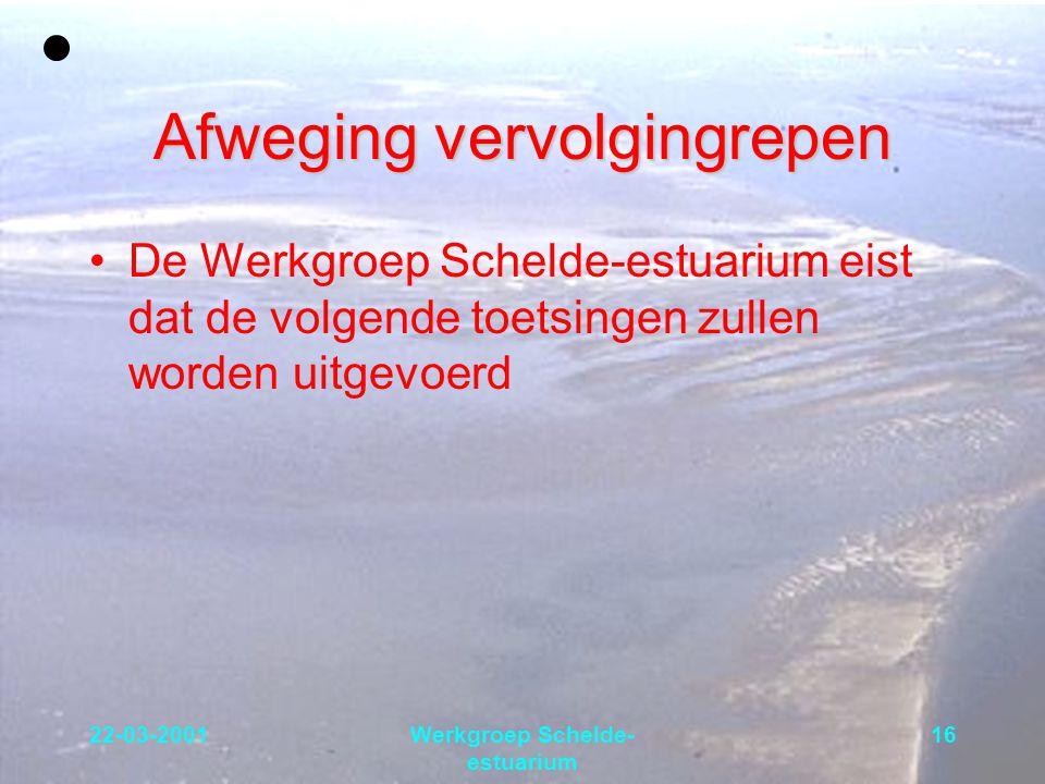 22-03-2001Werkgroep Schelde- estuarium 16 Afweging vervolgingrepen De Werkgroep Schelde-estuarium eist dat de volgende toetsingen zullen worden uitgev