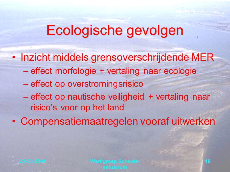 22-03-2001Werkgroep Schelde- estuarium 18 Ecologische gevolgen Inzicht middels grensoverschrijdende MER –effect morfologie + vertaling naar ecologie –