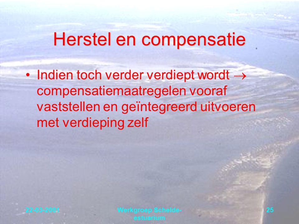 22-03-2001Werkgroep Schelde- estuarium 25 Herstel en compensatie Indien toch verder verdiept wordt  compensatiemaatregelen vooraf vaststellen en geïn