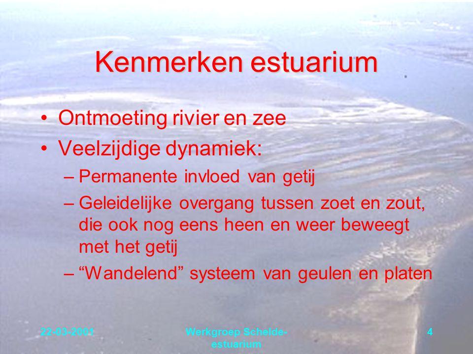22-03-2001Werkgroep Schelde- estuarium 4 Kenmerken estuarium Ontmoeting rivier en zee Veelzijdige dynamiek: –Permanente invloed van getij –Geleidelijk