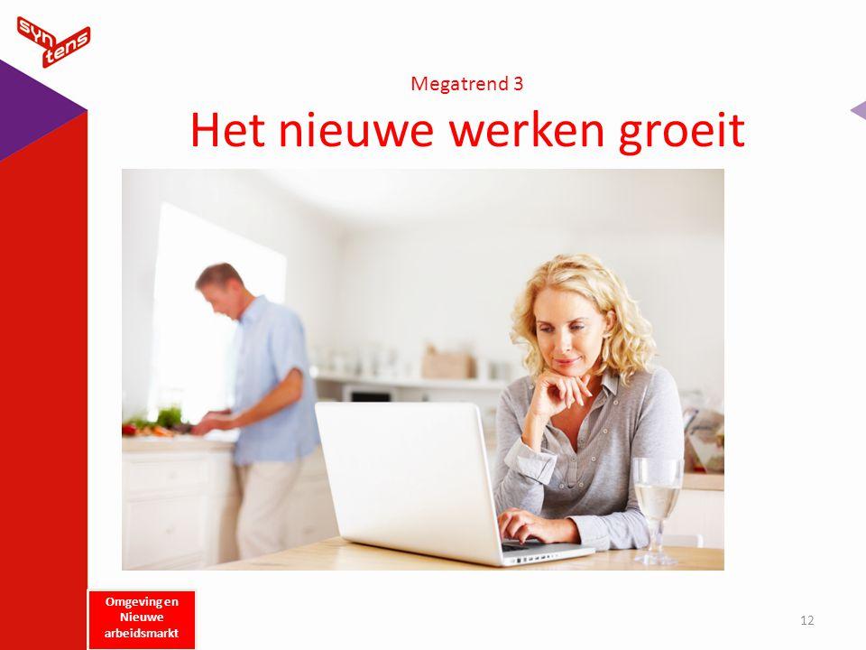 Megatrend 3 Het nieuwe werken groeit 12 Omgeving en Nieuwe arbeidsmarkt