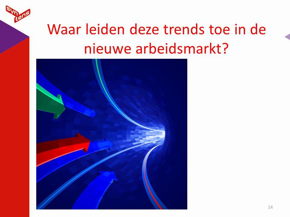 Waar leiden deze trends toe in de nieuwe arbeidsmarkt? 14