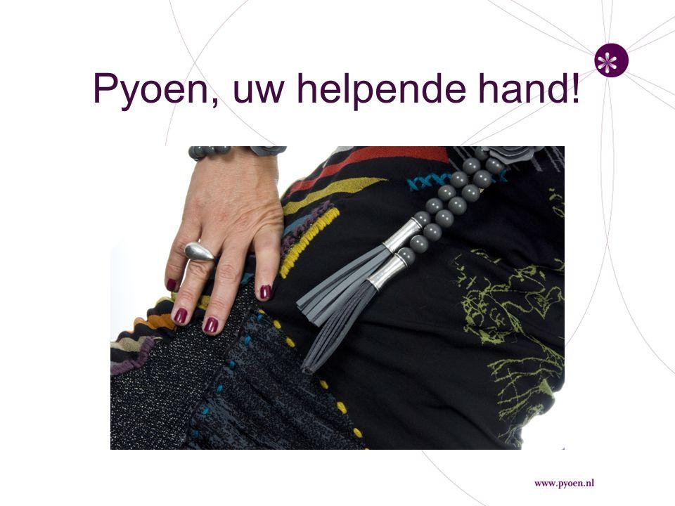 www.pyoen.nl Voor het laatste nieuws De Prikkels van Pyoen Het werk van Pyoen Het pyoen-model De stijl van Pyoen Portfolio Het verhaal van Pyoen