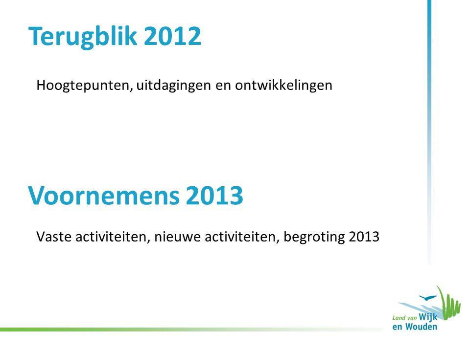 Hoogtepunten, uitdagingen en ontwikkelingen Terugblik 2012 Voornemens 2013 Vaste activiteiten, nieuwe activiteiten, begroting 2013